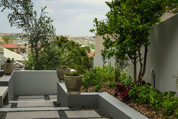 FSG Property Services, Landscaping Division for Stand 455 Eagle Canyon Golf Estate