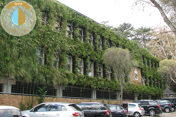 Life Landscapes A Division Of Life Green Group<br/>for<br/>Keyes Ave Green Wall