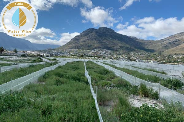 Vula Environmental Services (Pty) Ltd<br/>for<br/>Houtbay Dune Rehabilitation