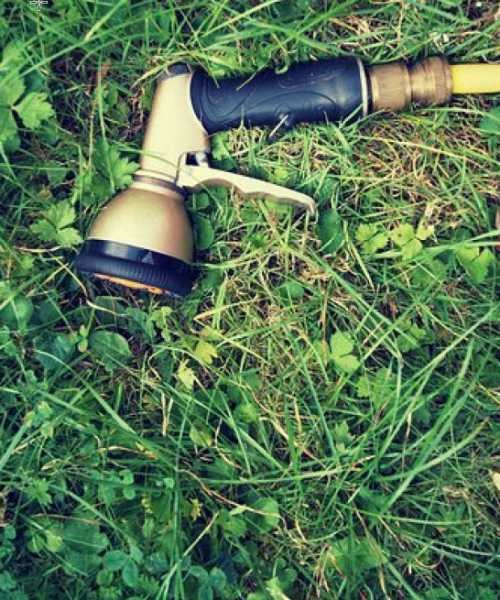 Africa Lawn's – Irrigation and Your Lawn