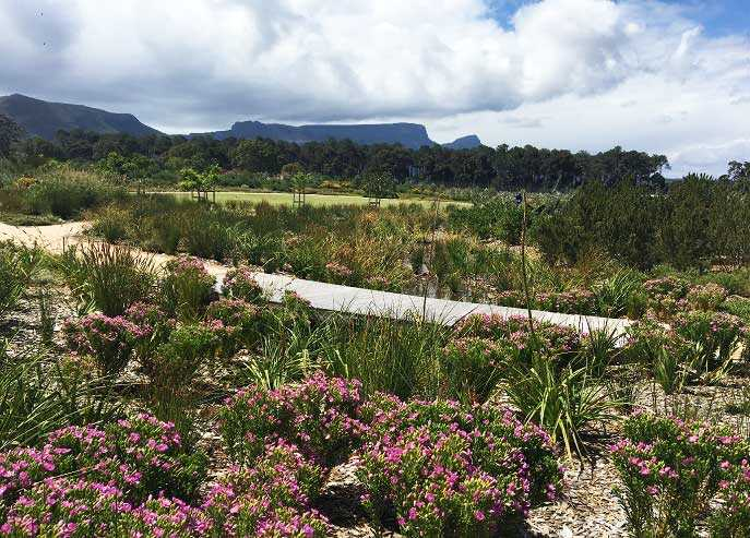 Top water wise award for Peninsula Landscaping